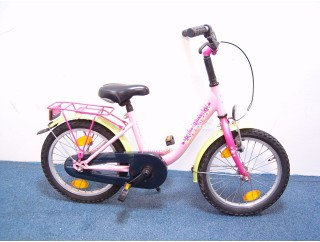 max 2 bike tropical 16 inch